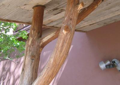 Enty canopy